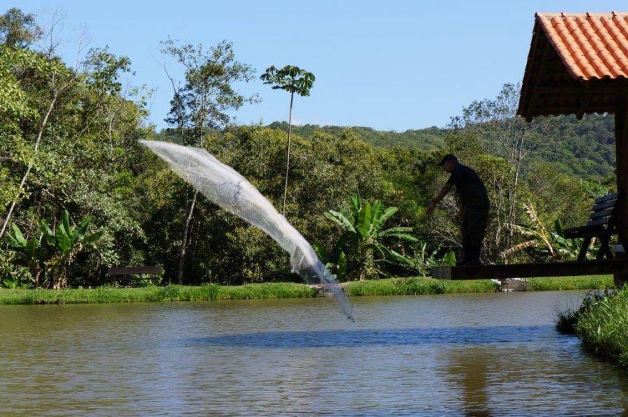 A sustentabilidade no cultivo de piscicultura