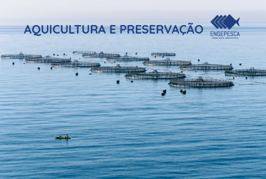 Aquicultura: preservar para aumentar a produção