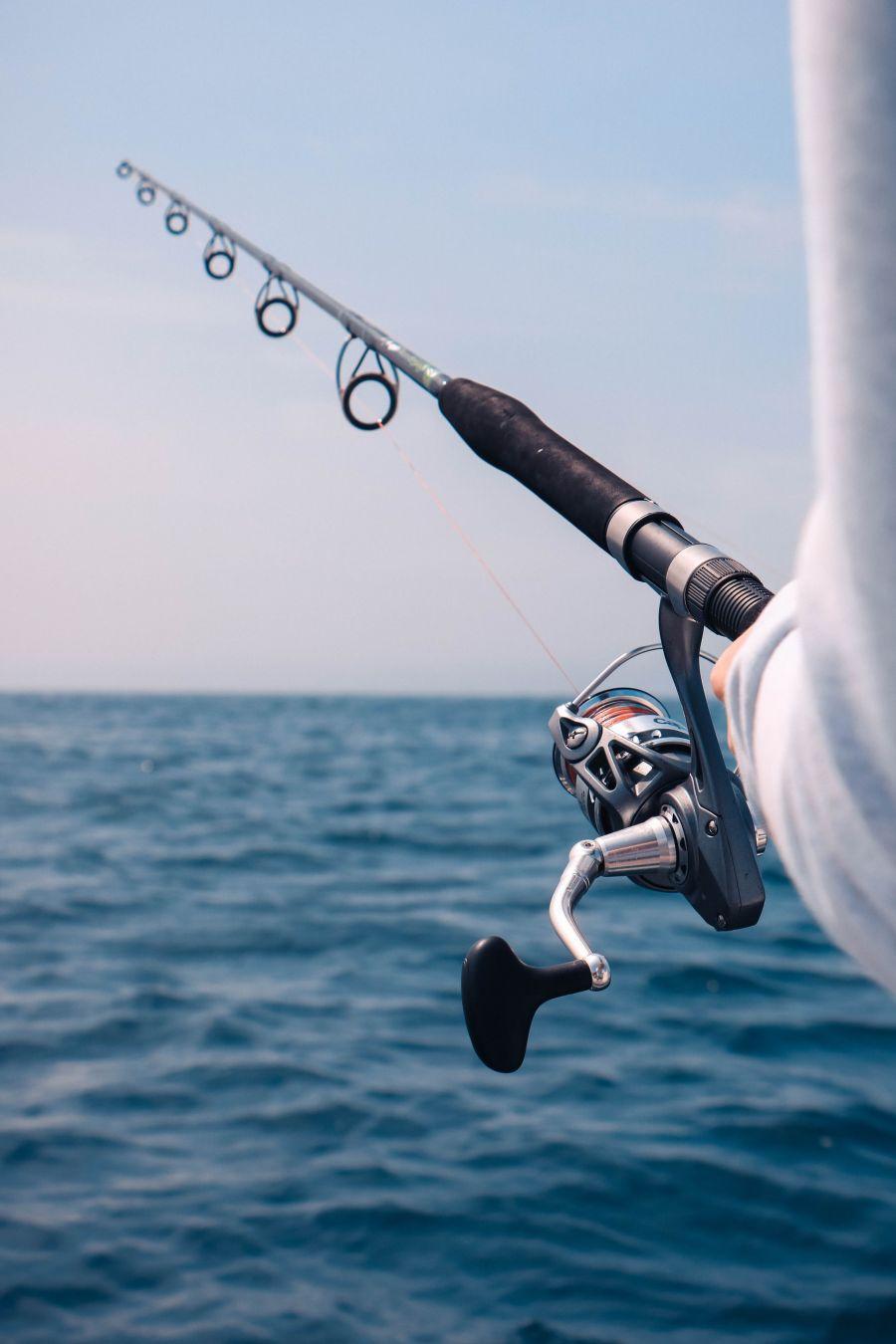 Sobre a sustentabilidade pesqueira