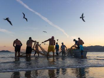 Cultivo de peixe-panga passa a ser permitido no Ceará