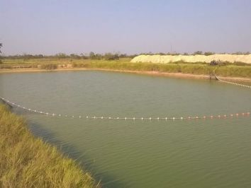 Passo a passo para definir o tamanho ideal da rede de pesca
